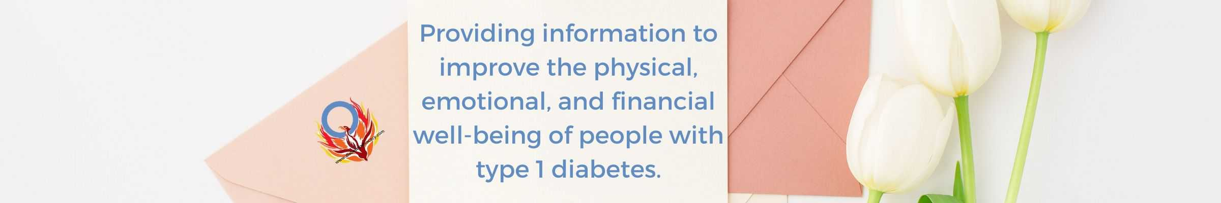 diabetes advocacy banner (2)