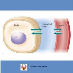 glucose in blood vs interstitial fluid